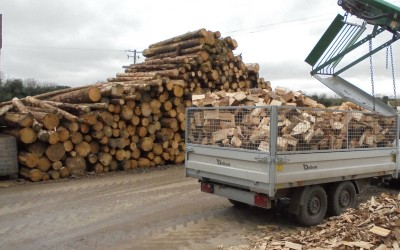 Logman North Dublin Firewood Meath Louth (4)