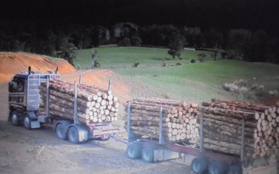 Logman North Dublin Firewood Meath Louth (8)