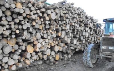 Logman North Dublin Firewood Meath Louth (9)
